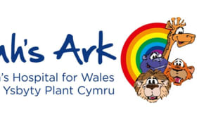 Noahs Ark Childrens Hospital for Wales logo.